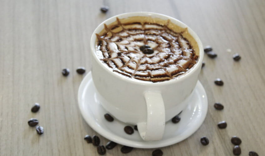 Café Rosita